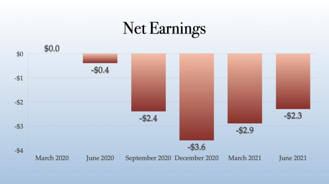 Plus Products Net Earnings