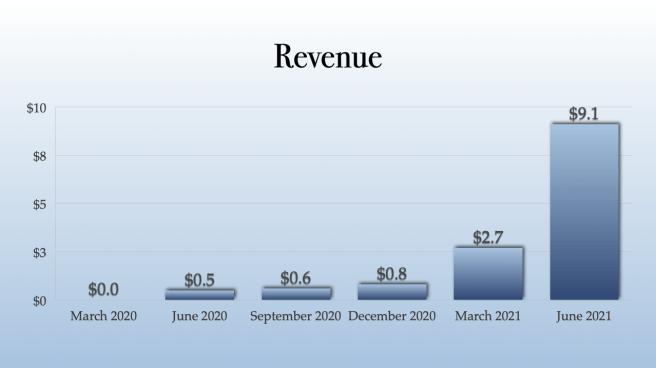 Gaby Revenue