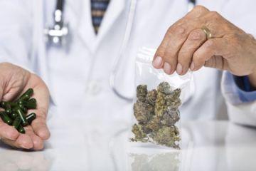 Cannabis is an Effective Asthma Treatment
