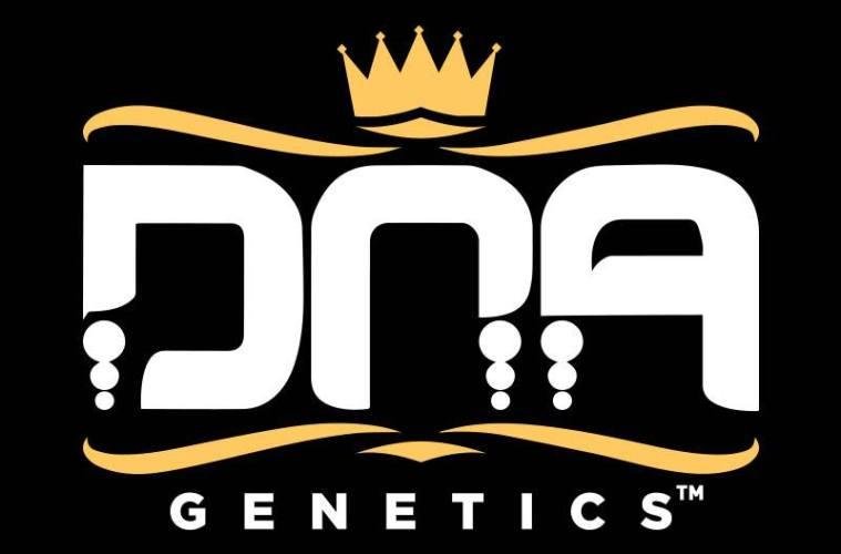 og dna genetics