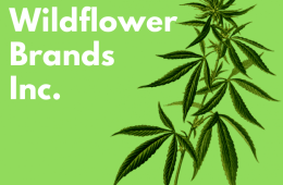 WILDFLOWER – CLOSING OF PRIVATE PLACEMENT