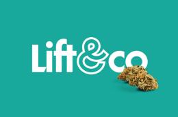Lift & Co COVID-19