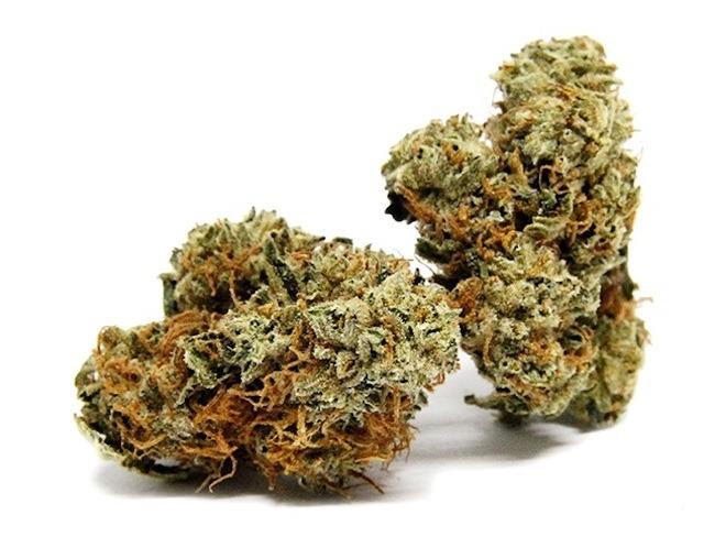 7 Cannabis Strains for Daytime Productivity During Quarantine - Cannabis News Canada