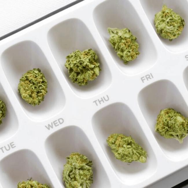 CBD and THC dose