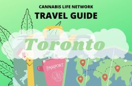 The Ultimate Stoner's Guide to Toronto
