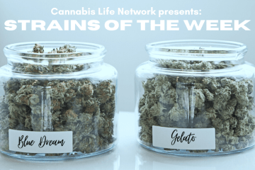 Strains of the week