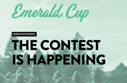 2020 California Emerald Cup