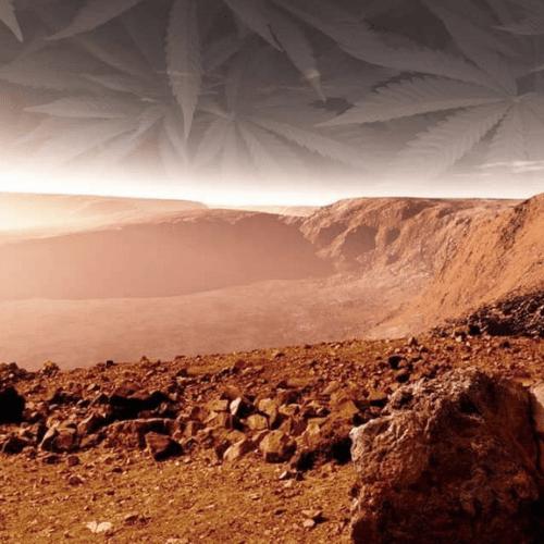 Cannabis and Mars