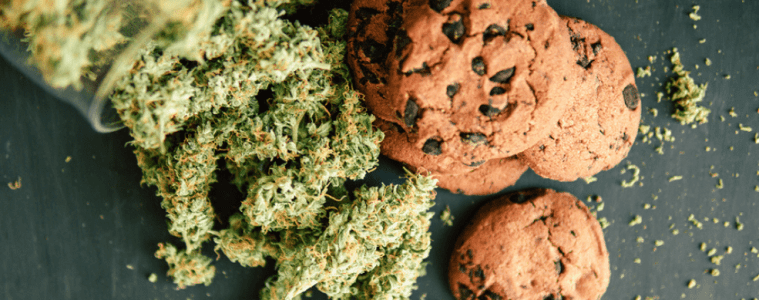 The Wellness Soldier - Introduction To Cooking With Cannabis