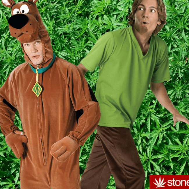 Shaggy and Scooby doobie-doo