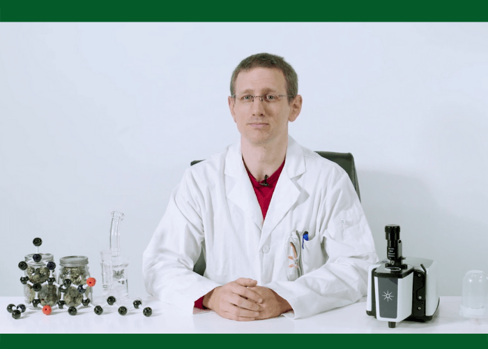 How long will weed stay in the system? Ask An Expert with Dr. Markus Roggen