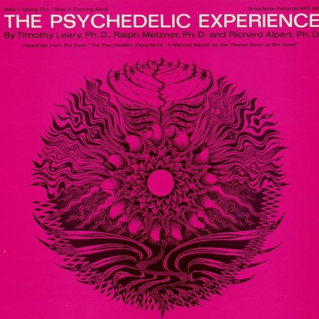 The Psychedelic Experience teaches how to use shrooms without an upset stomach
