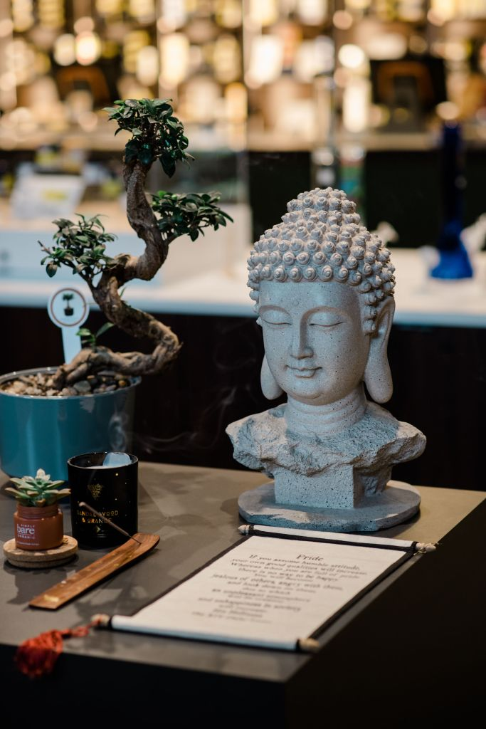 Mindfulness at Seed & Stone