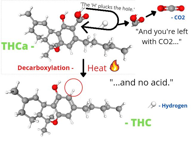 THCa decarboxylation