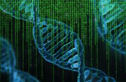 CRISPR, the future of cannabis production, explained