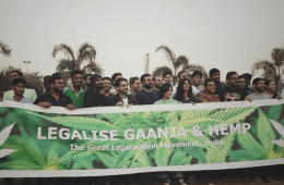 Why Cannabis Should be legalized in India (2)