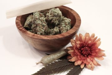 cannabis as altenative medicine