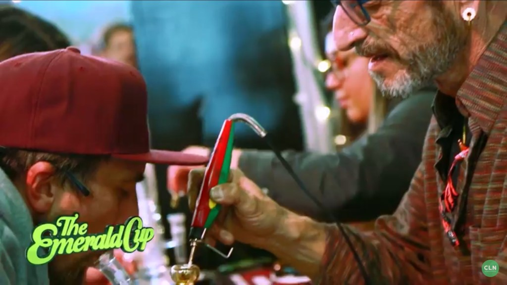 Frenchy Cannoli at work Emerald Cup 2017