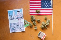 Cannabis Decriminalized in New Orleans, Pardons 10,000 Cannabis Convictions