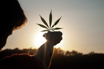 Cannabis Student Organizations 1: Canadian Students for Sensible Drug Policy