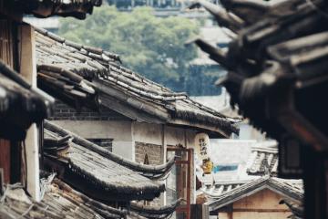 Cannabis in China Stigmatization and Crackdown