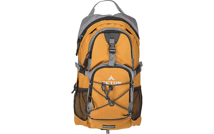 Sports Oasis Hydration Pack by TETON