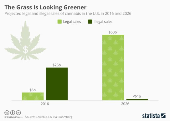 marijuana sales cannabis stats