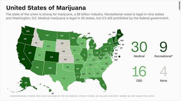 marijuana stats