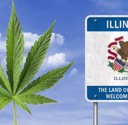 illinois cannabis
