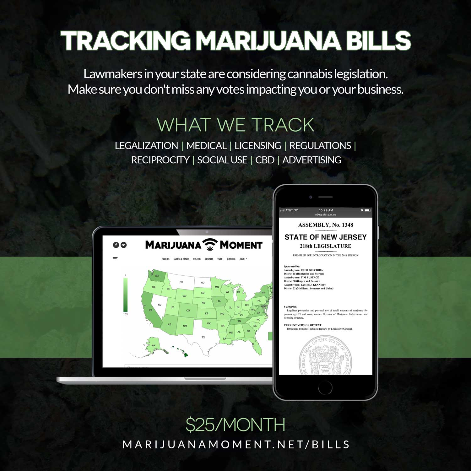 """NY gov wants legal cannabis """"soon"""" (Newsletter: October 26, 2020)"""