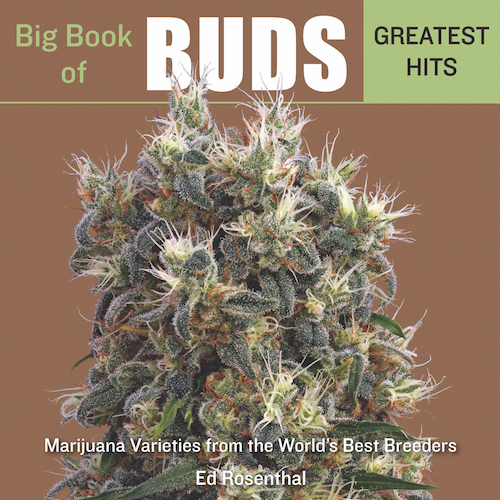 Big Book of Buds Cannabis Now