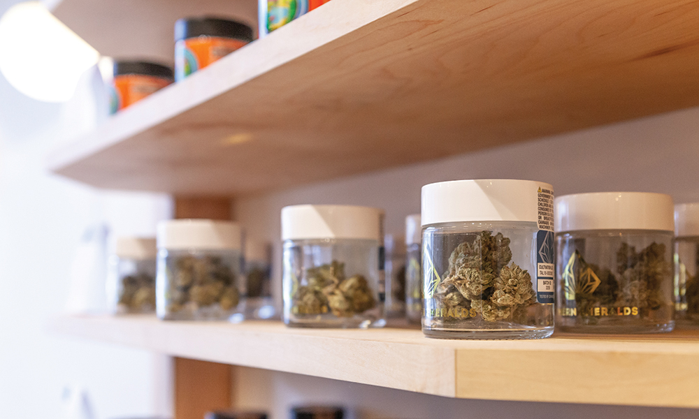 Outgrowth of Adaption The Vapor Room Returns  Cannabis Now
