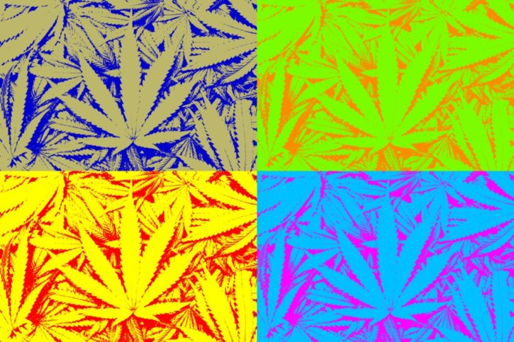 Cannabis Design