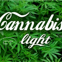 La Cannabis light è legale ma..