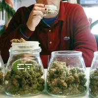 Legalizzazione regolamentata in arrivo?