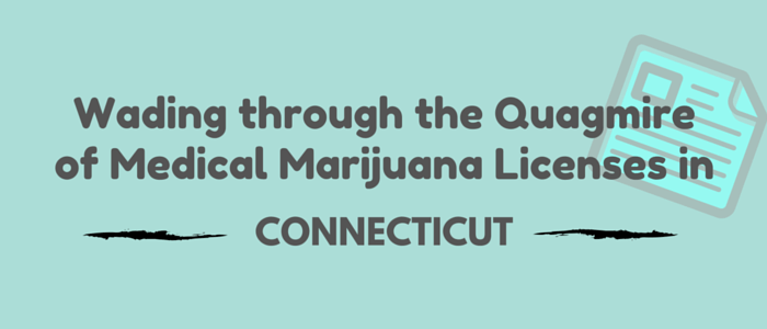 Wading Through the Quagmire of Marijuana Licenses in Connecticut