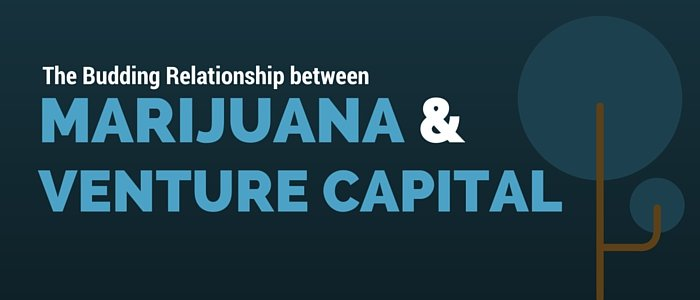 The Budding Relationship between Marijuana and Venture Capital