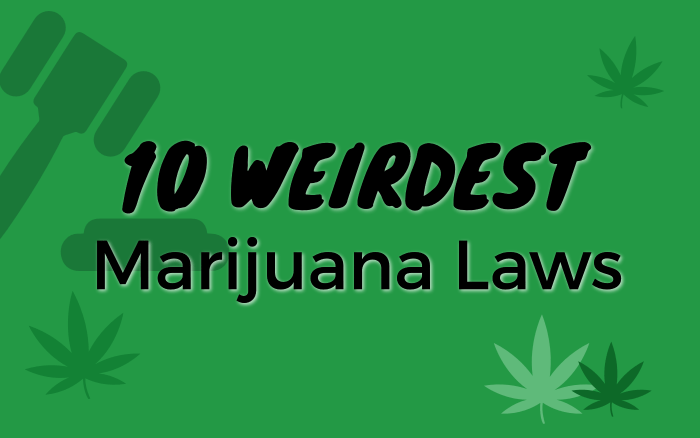10 Weirdest Marijuana Laws