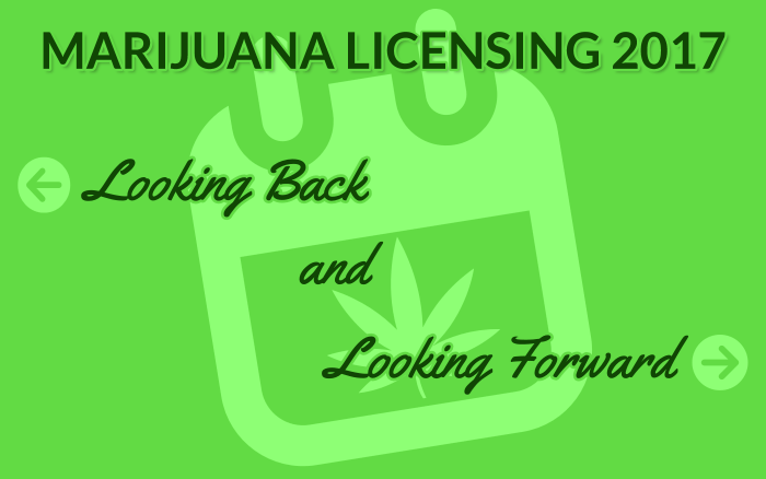 Marijuana Licensing 2017 – Looking Back and Looking Forward