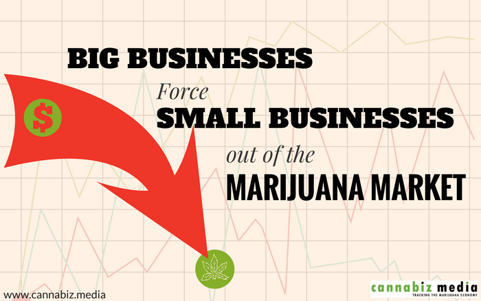 Big Businesses Force Small Businesses out of the Marijuana Market