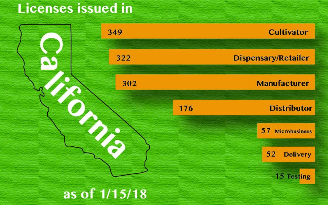 Trends and Surprises From California's First 1,000 Cannabis Licenses