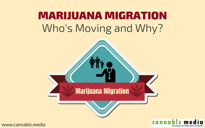 Cannabis Migration – Who's Moving and Why?