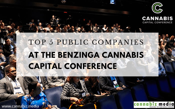 Top 5 Public Cannabis Companies at the Benzinga Cannabis Capital Conference
