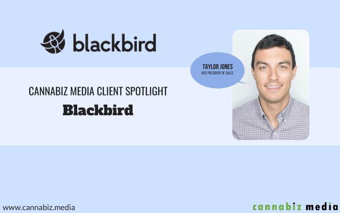 Cannabiz Media Client Spotlight – Blackbird