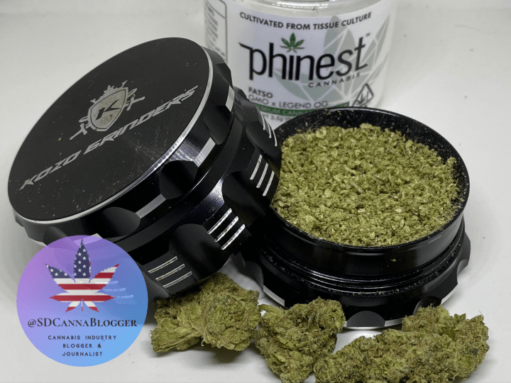 Review | pHinest Cannabis's Fatso Makes Quarantine Infinitely More Bearable | Mankind