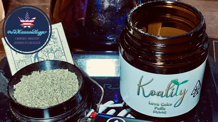 Review | Koality Cannabis Lives Up to Its Name