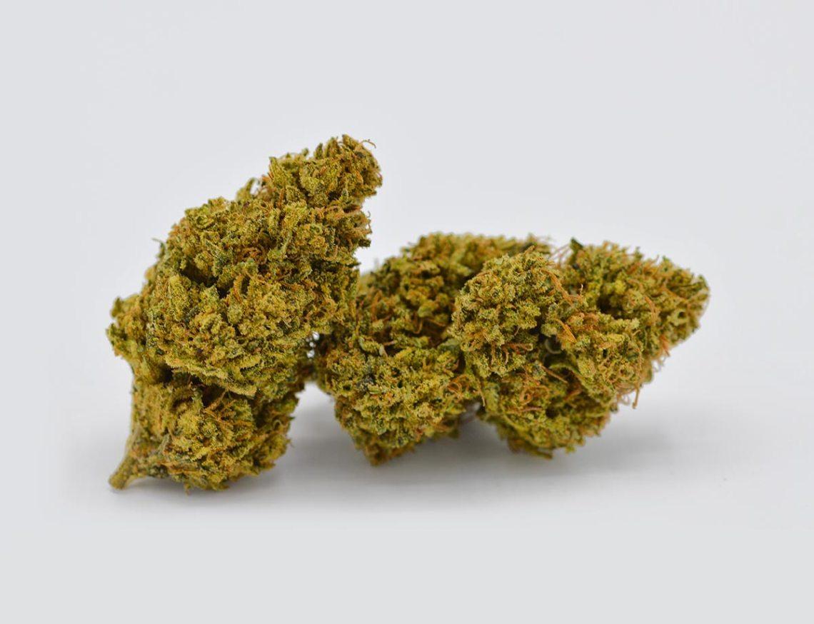 shop-cbd-oil-erba-legale-cannabis-light