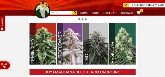 image49 - Crop King Seeds