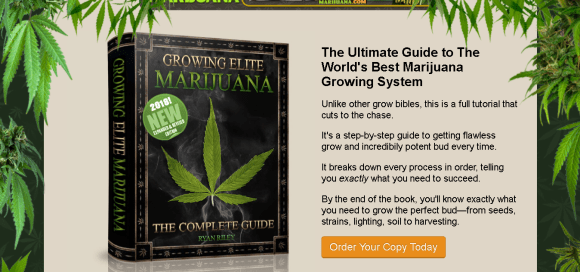 item86 - How to grow weed