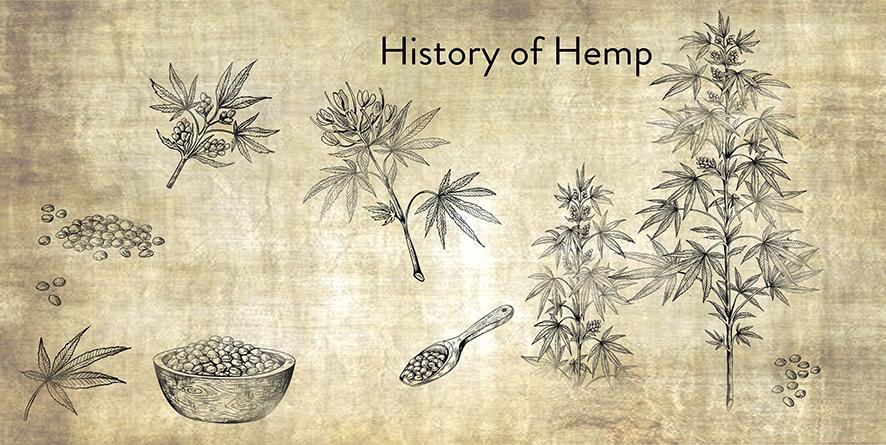History of CBD